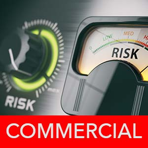 Commercial Risk Assessment physical security